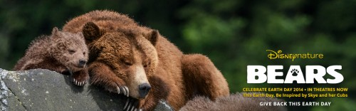 """Give back this Earth Day by watching """"Bears"""" in theaters now! (Photo source: http://nature.disney.com/bears/products)."""