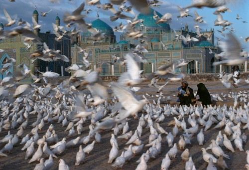 "Blue Mosque, Mazar i Sharif, Afghanistan, 1991, 1992""Doves in front of Mazar-e Sharif's famous 'Blue Mosque,' the Tomb of Hazrat Ali. Revered by Muslims as the tomb of the son-in-law of the Prophet Mohammed, this 15th-century mosque near the border of Uzbekistan is named for the cobalt blue and turquoise colors of its minarets and domes. Mazar-e Sharif, Afghanistan, 1991.""- George Eastman House""The white doves are a tourist attraction for Afghans. They are fed and cared for by travelers - by traders and farmers who come to market, and by residents of the northern region who come to the city to pray at the large mosque. In a country not given to leisure travel, the doves provide a symbol of peace."" - Phaidon 55NYC5926, MCS1994002 K046 final print_milan"
